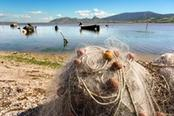 pesca in sardegna