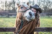 pet therapy con cavalli in trentino