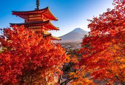 tokyo e monte fuji in autunno coperti dal foliage