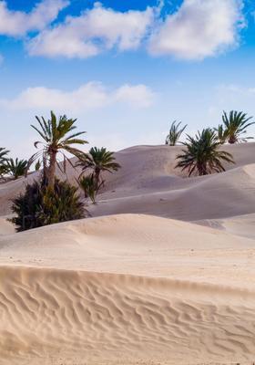 dune del deserto di douz