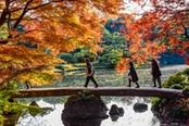 persone locali passeggiano su un ponte giapponese