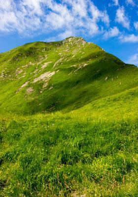 trekking nel parco nazionale dell appennino tosco emiliano