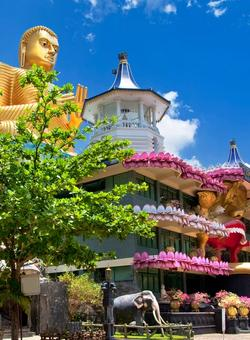 tempio buddha oro sri lanka