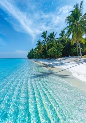 spiaggia maldive dhigurah