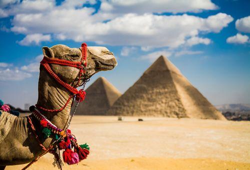 Viaggio nel tempo in Egitto cover