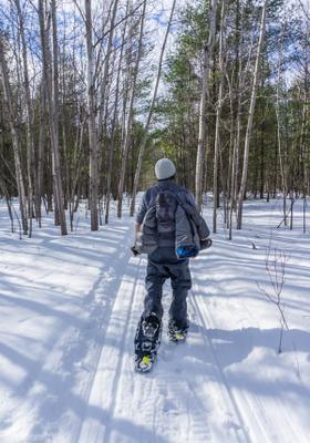 dove sciare in slovenia