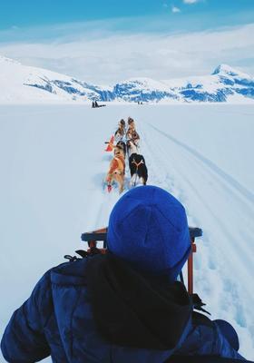 uomo su slitta trainata da cani husky nella neve