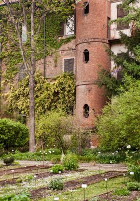 visitare l orto botanico di brera