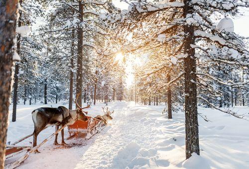 Lapponia: Viaggio nel magico Nord cover
