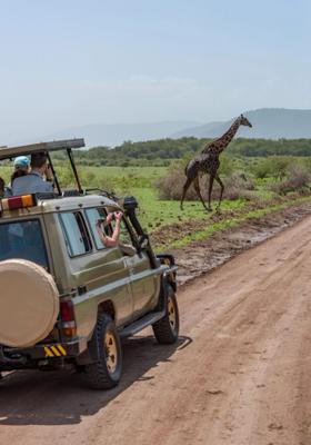 safari nel parco nazionale kruger su jeep