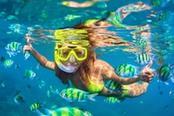 ragazza fa snorkeling fra pesci gialli