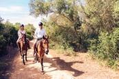 lezioni di equitazione per adulti in trentino