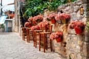 strade con fiori nel viaggio greco di afitos