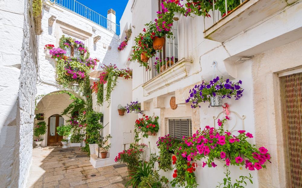 strade di cisternino con fiori in puglia
