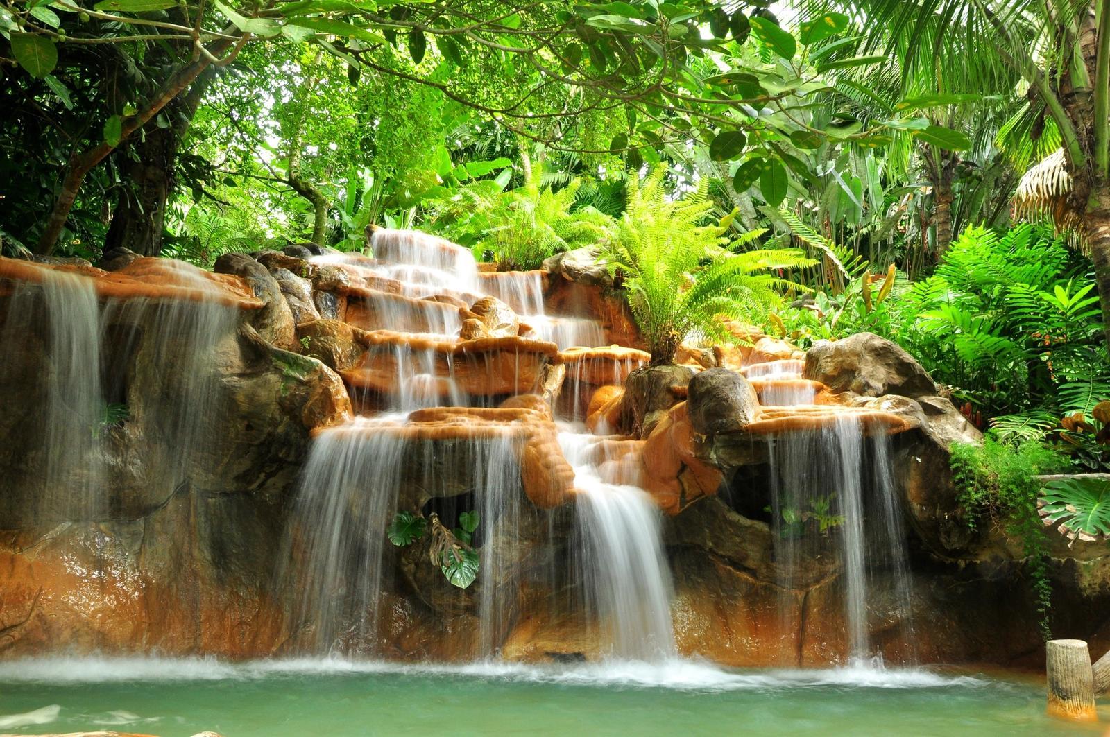 Foresta Costa Rica