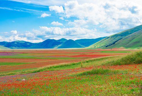 Viaggio a piedi fra Umbria e Marche cover
