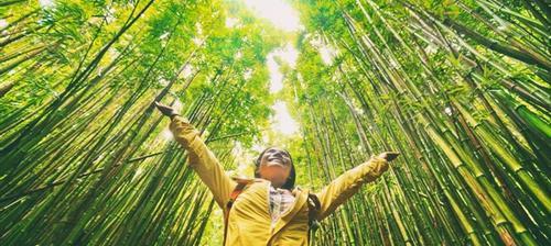viaggiatrice in mezzo alla natura