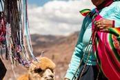 Donna peruviana con lama