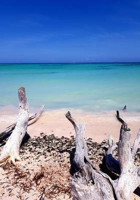 spiaggia cayo jutias a cuba