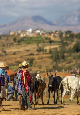 pastori di ambalavao madagascar