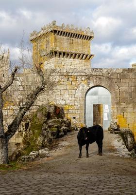 palas de rei castello