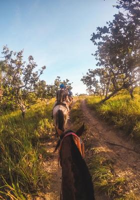 escursioni a cavallo a lanzarote