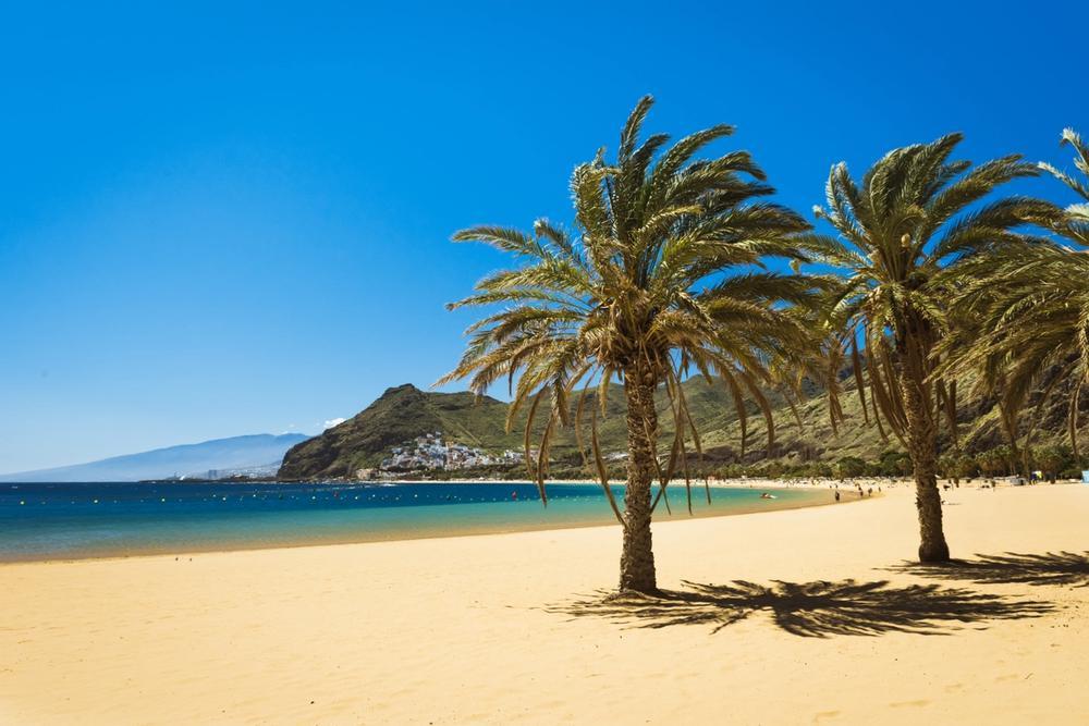 spiaggia con palme las teresitas a tenerife