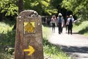 cammino di santiago freccia gialla