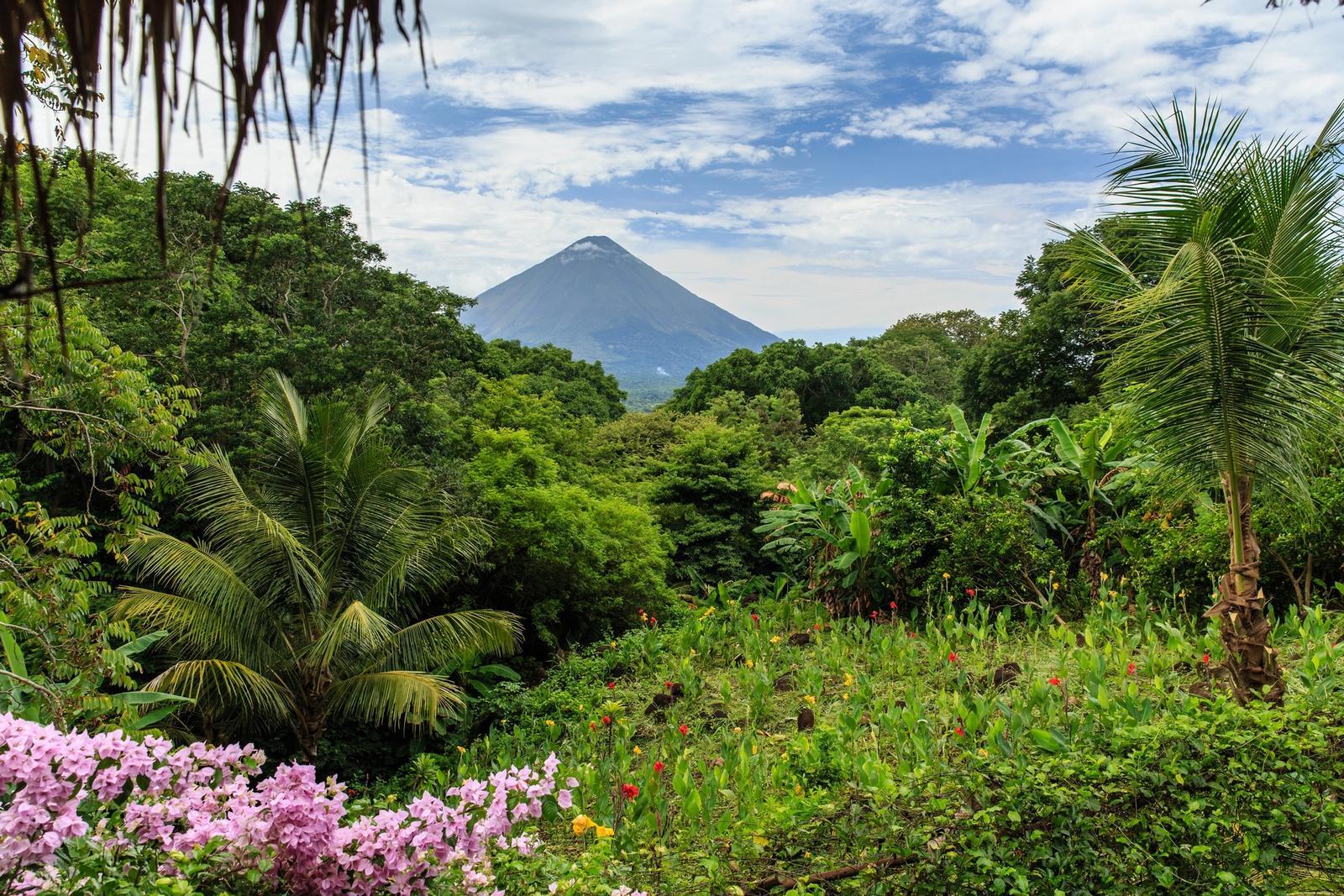 vulcano immerso nella natura