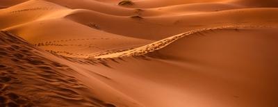 viaggi nel deserto