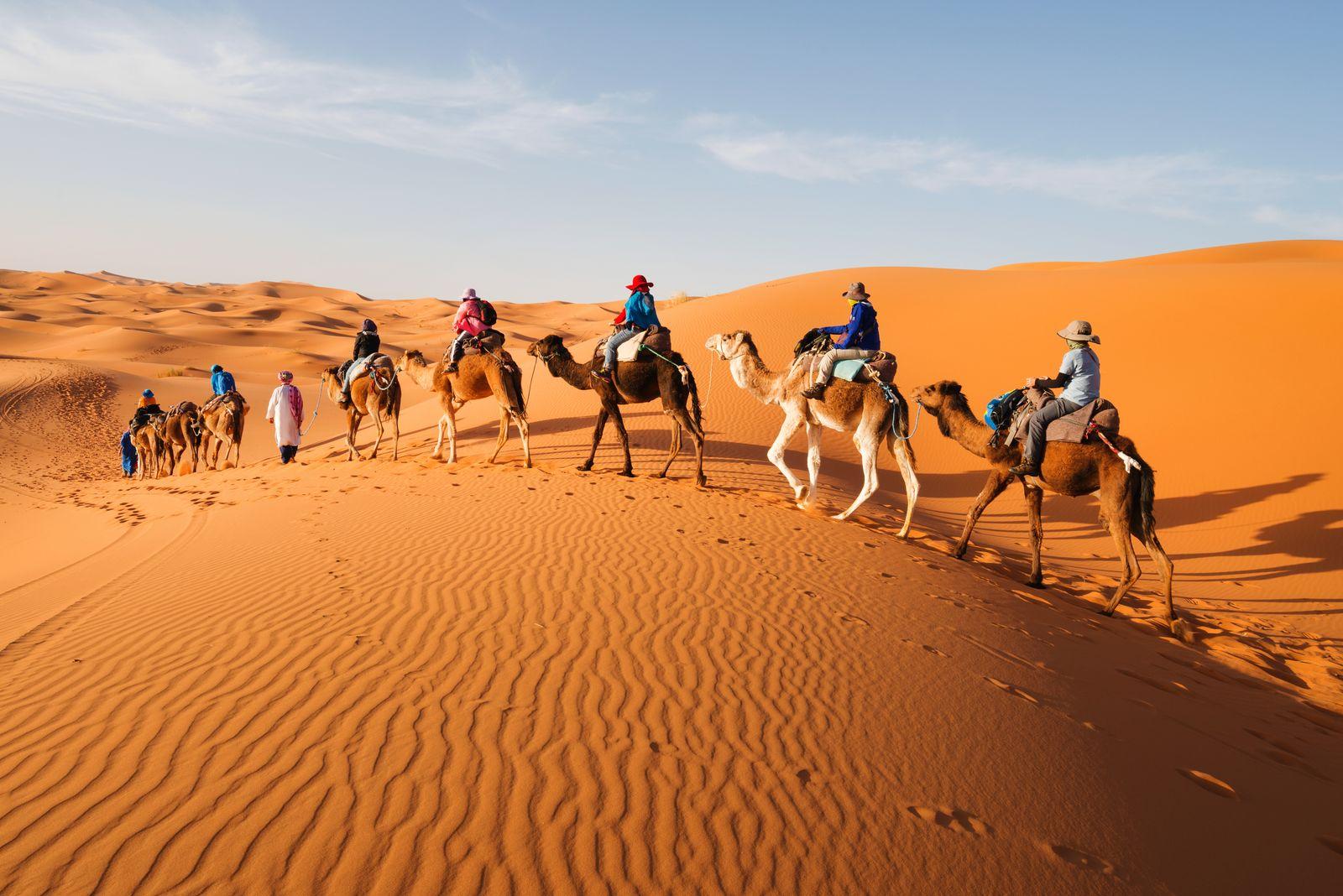 escursione nel deserto con i cammelli marocco