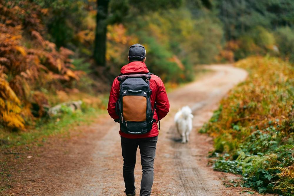 ragazzo in montagna con il cane