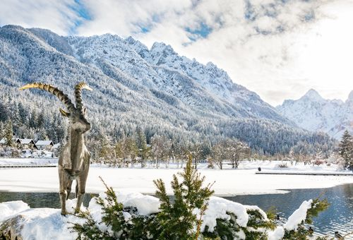 Slovenia sulla neve: Kranjska Gora cover
