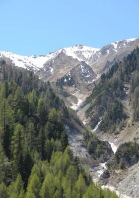 parco nazionale dello stelvio in estate