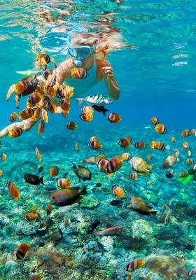 fare snorkeling alle maldive