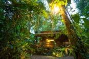 Casa immersa nella foresta tropicale