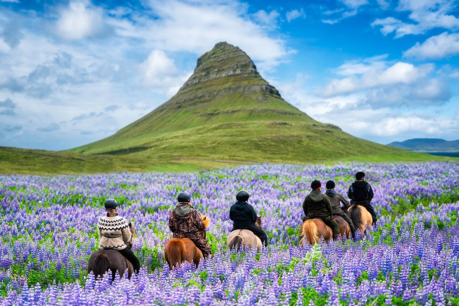 gite a cavallo organizzate