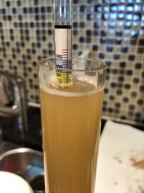 hydrometer sample of finished beer