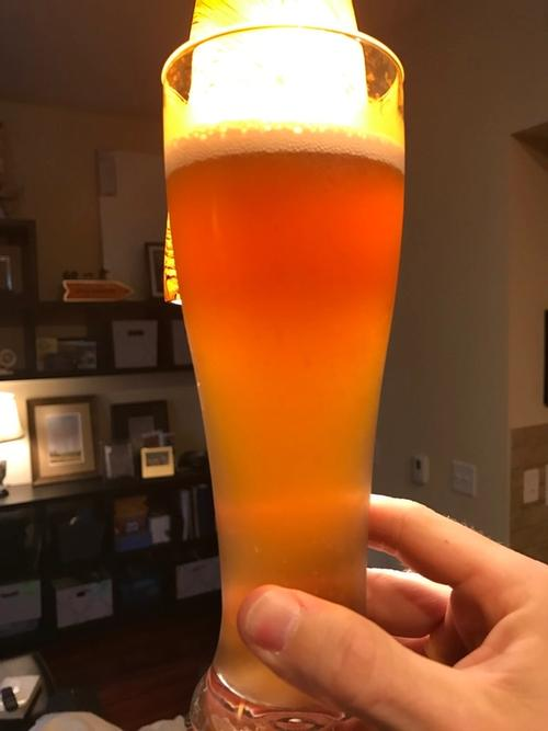 beer glass with beer