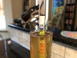 a hydrometer sample