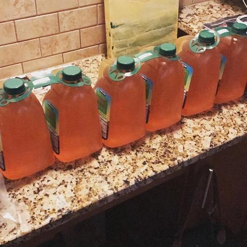apple juice for cider