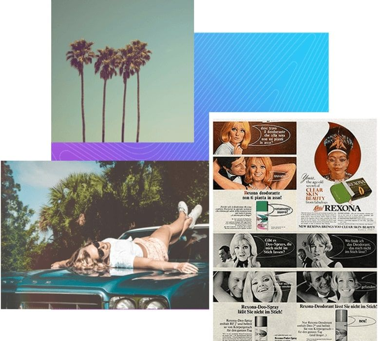 A selection of vintage photos including some palm trees and a woman lying on a car bonnet
