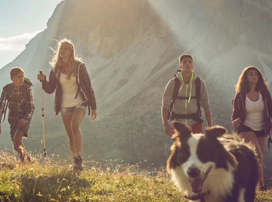 Group of young people walking in a field with a dog.