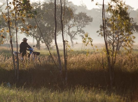 Man cycling through a field in the early morning light.