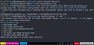 A screenshot of a terminal using the CLI