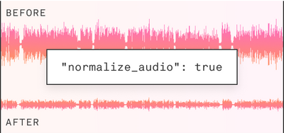 normalize_audio: true