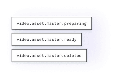 video master access