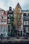 Mux at IBC Amsterdam 2018