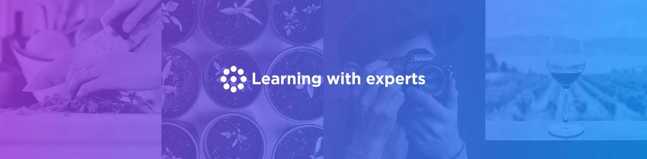 banner for Learning with Experts