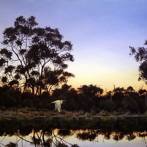 Thomson River Nightfall Remembered